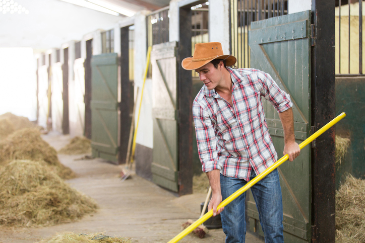 cowboy working in a stable